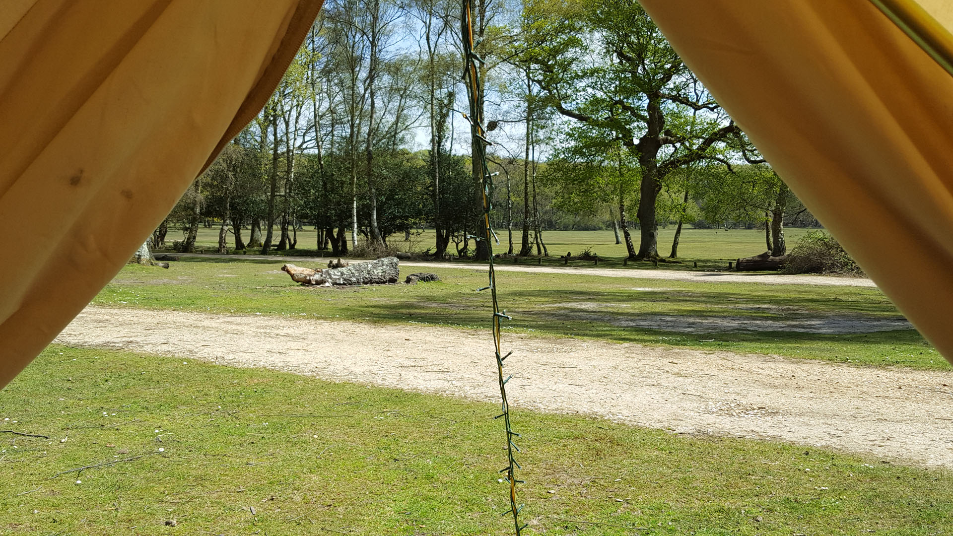 bell-tent-view-hollands-wood-2